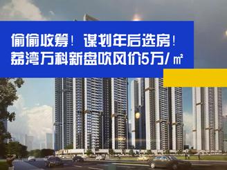 谋划年后选房!荔湾万科新盘吹风价5万/㎡