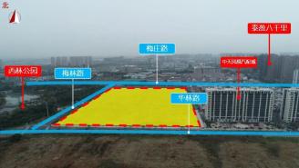 儒辰18.36亿元竞得西林地块